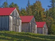 3 graneros de madera cubiertos rojos Fotografía de archivo