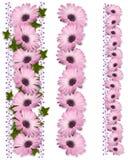 3 granic stokrotki purpur stylu Zdjęcie Stock
