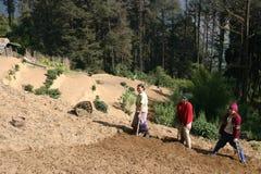 3 granjeros de las mujeres, montañas Himalayan Fotografía de archivo