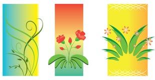 3 ilustraciones florales del vector Fotografía de archivo
