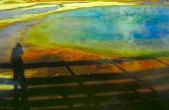 3 ingen yellowstone Arkivbild