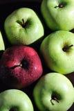 3 jabłka świeżego Fotografia Royalty Free