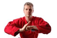 3 jiu jitsu Fotografia Royalty Free