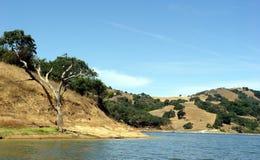 3 Kalifornien kullar Royaltyfria Foton