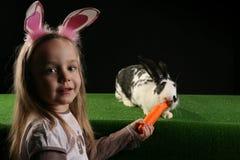 3 kaniner två Arkivfoton