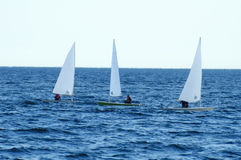 3 Kayak Sailboats. In the waters of Lake Ontario with a bit of motion blur to simulate motion of the vessels and unidentifiable passengers controlling them Royalty Free Stock Image