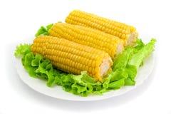 3 kukurydza Zdjęcia Royalty Free