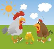 3 kurczak Fotografia Royalty Free
