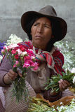 3 kwiatów target1353_1_ Fotografia Royalty Free