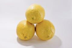3 lemon on white background Stock Photos