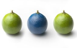 3 limes. 2 green and 1 blue limes  on a white background Stock Images