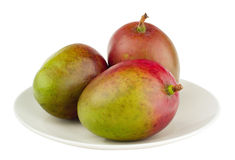 3 mangos on the white plate, isolated Royalty Free Stock Photos