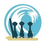3 Meercat Surfer u. Welle Stockbilder