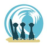 3 Meercat Surfers & Wave Stock Images