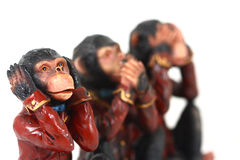 3 Monkeys. In different poses stock photography