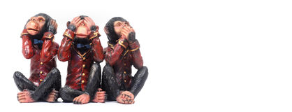3 monkeys concept. 3 monkeys in various poses royalty free stock photos