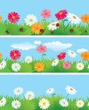 3 naadloze grenzen met bloemen en l Stock Foto's