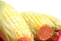 3 oídos de ángulo del maíz de caramelo Fotos de archivo