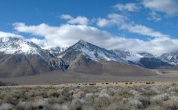 3 område ca Mammoth Mountain Arkivfoton