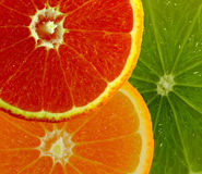 3 owoc Zdjęcie Royalty Free