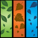 3 Panel Nature Set. Set of 3 panels of leaves - green, orange, and blue backgrounds Royalty Free Stock Photos