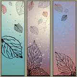 3 Panel Nature Set. Set of 3 panels of leaves Royalty Free Stock Image