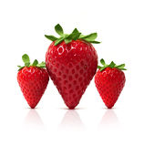 3 perfect Strawberries Royalty Free Stock Photo
