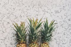 3 Pineapple Fruit on White and Grey Sand Royalty Free Stock Image