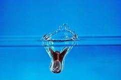 3 pluśnięć wody Zdjęcie Royalty Free