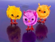 3 polluelos coloridos del resorte Fotografía de archivo