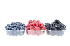 3 pots of berries Stock Photography
