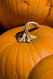 3 pumpkins Royalty Free Stock Images
