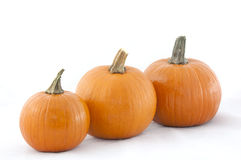 3 Pumpkins in a Row Stock Photo