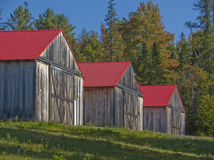 3 röda taklade träladugårdar Arkivbild