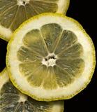 3 rebanadas del limón en fondo negro Imagen de archivo