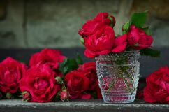 3 Red Rose on Glass Container Stock Images
