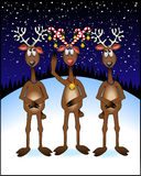 3-reindeer_candy-cane_2 Stock Photo