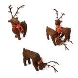 3 rennes de positions de Noël Photographie stock libre de droits