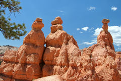 3 Rock Towers. Bryce Canyon National Park royalty free stock photo