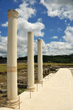 3 roman columns in the forum Stock Image
