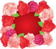 3 roses. Banner, vector illustration Stock Photography