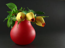 3 roses dark. Three yellow roses placed on red vase against dark background - narrow focus Royalty Free Stock Photo