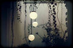 3 Round Pendant Lamps Near Vines Inside Room Stock Photos