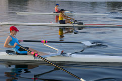 3 Rowers Stock Photos