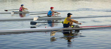 3 Rowers Royalty Free Stock Photos