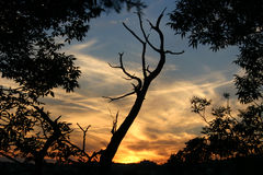 3 słońca obraz stock