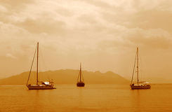 3 sailing boats. In calm waters, sepia royalty free stock image