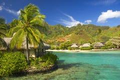 3 sandiga tropiskt för strand Arkivfoton