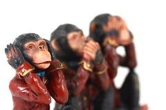 3 scimmie Fotografia Stock