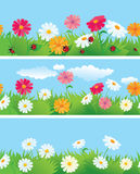 3 seamless borders with flowers and l Stock Photos